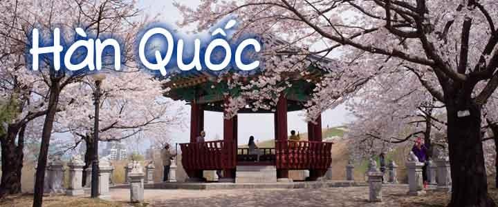 Hàn Quốc mùa hoa Anh đào 2017