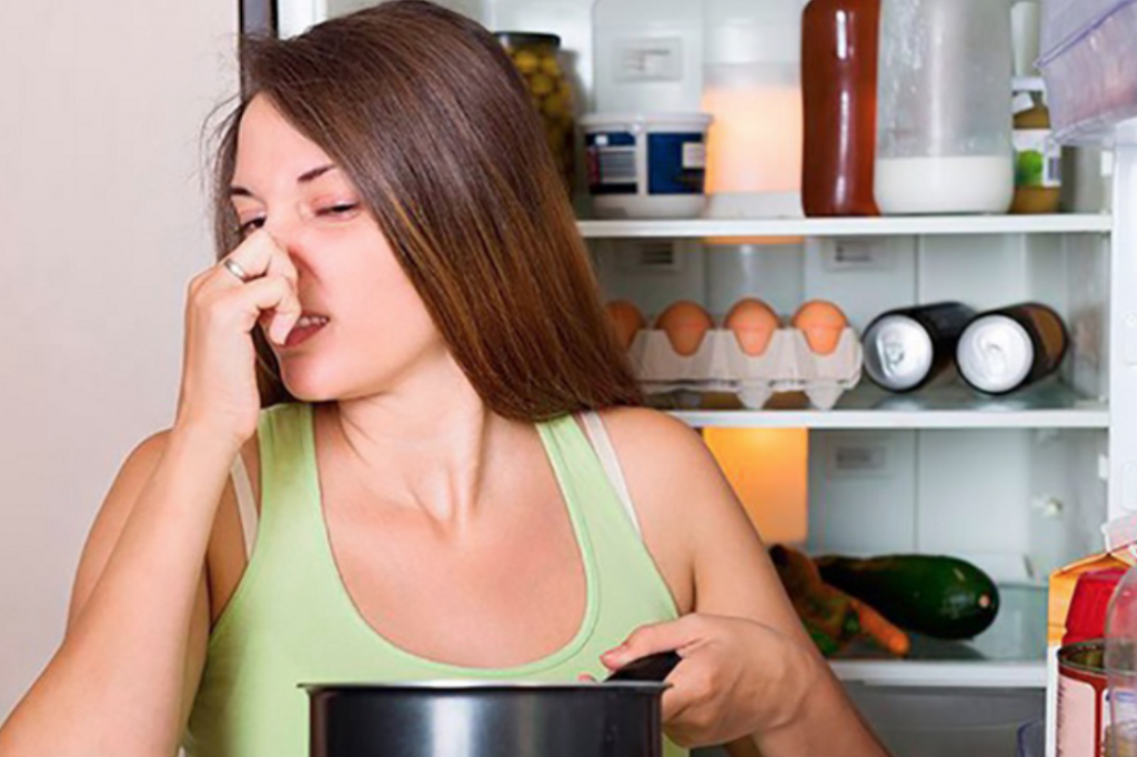 Thực phẩm quá nóng sẽ bị sốc nhiệt gây phân hủy nhanh khi cho vào tủ lạnh