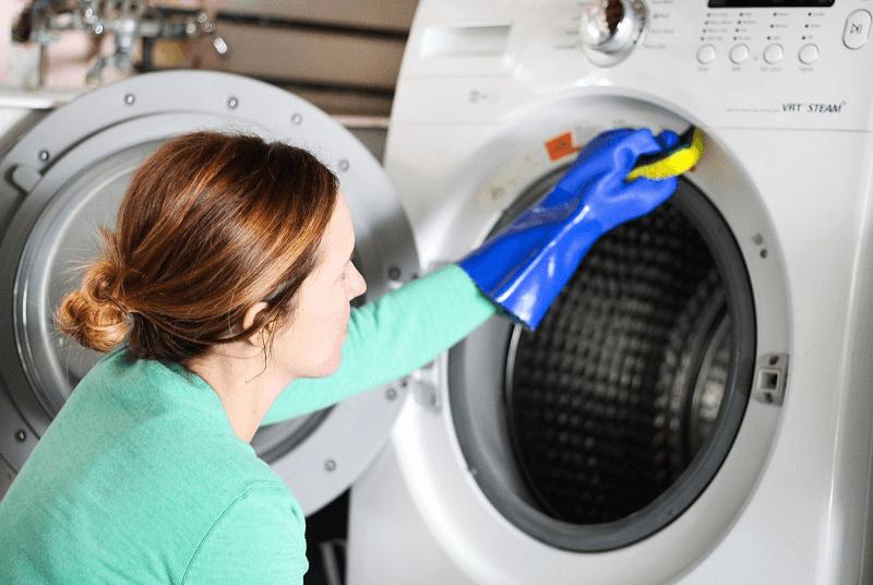 Nấm mốc là nguyên nhân chính gây nên mùi hôi trong máy giặt